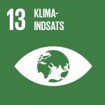 13. Klimaindsats